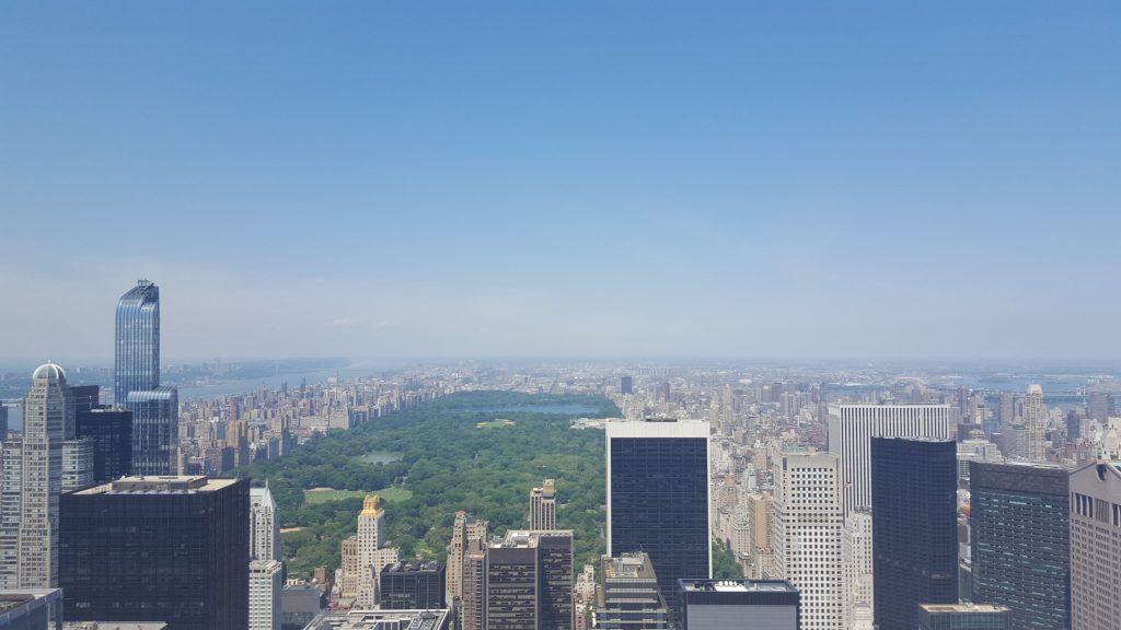 New York Vicente
